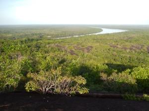 Así se ve el río Inírida desde el cerro Mavecure, en Guainía. Foto: Juan Uribe
